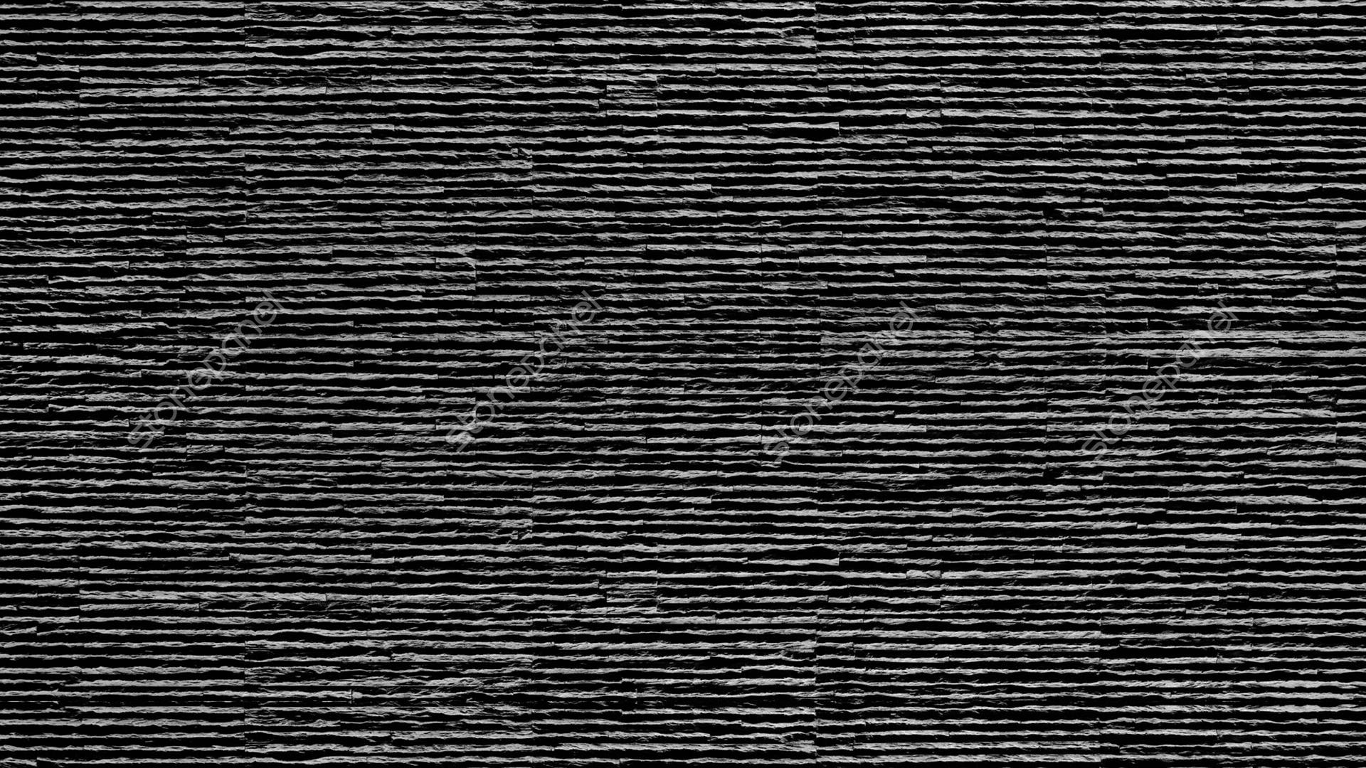 Rayas / NEGRA - SP/2905